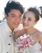 李小璐刘璇 大全13位已婚女星新娘发型