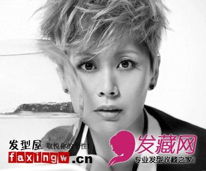 海清最新造型短发粉红色潮流另类刘涛马尾扎发图片