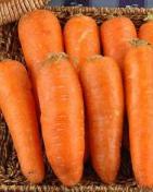 怎样食疗防止脱发 8大防脱食品推荐