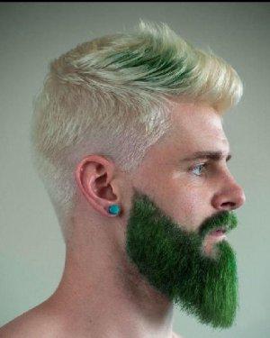 2017男人胡子流行色 极具潮流感